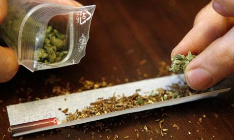 Your brain on cannabis