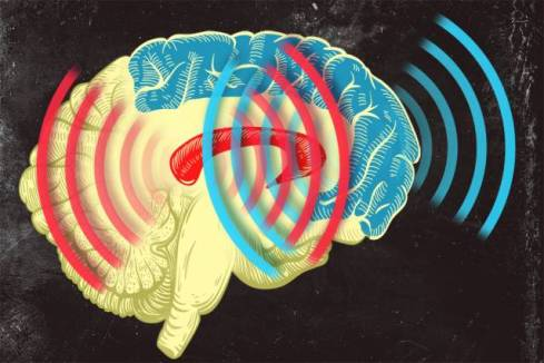 MIT neuroscientists found that brain waves originating from the striatum (red) and from the prefrontal cortex (blue) become synchronized when an animal learns to categorize different patterns of dots.  Illustration: Jose-Luis Olivares/MIT