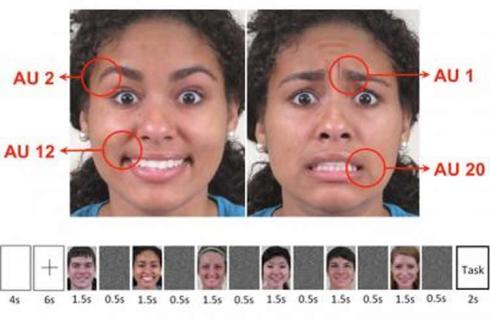 facial-expression-emotion