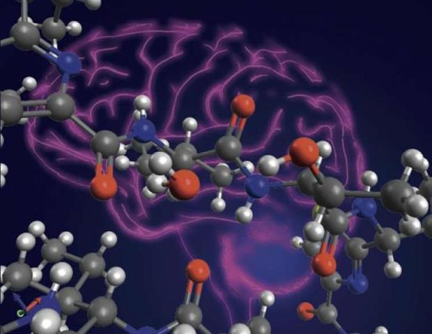 neuroimaging-early-alzheimers-neurosciencneews.jpg