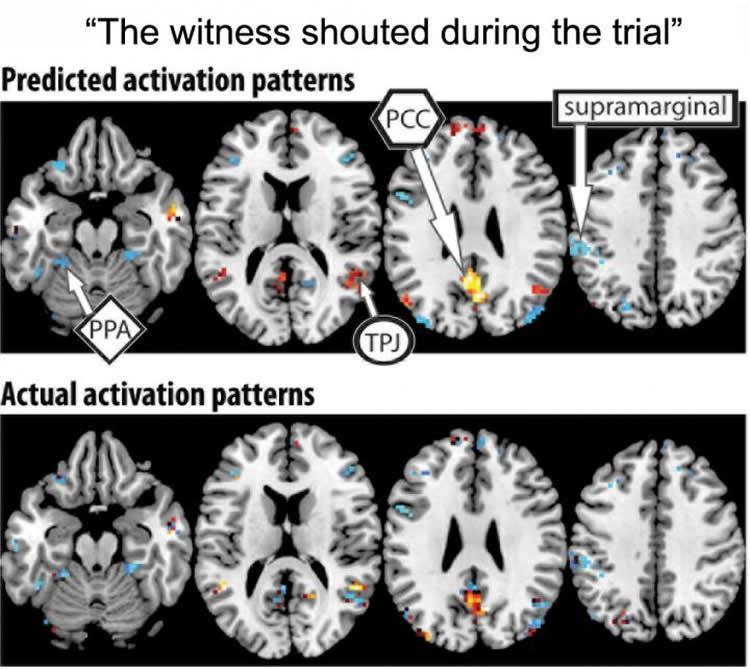 macine-learning-thought-fmri-neurosciencenews.jpg