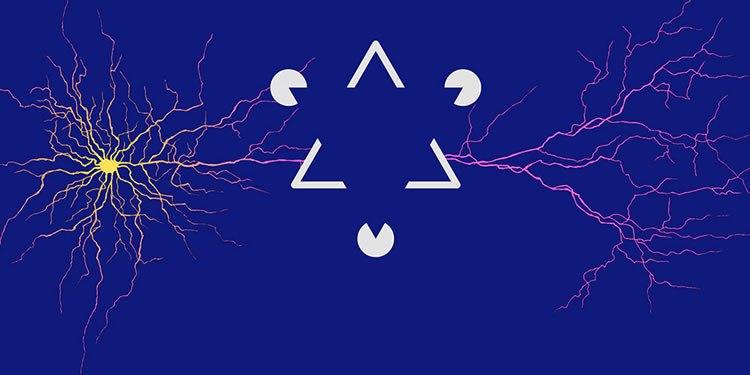 synapses-visual-world-neurosciencenews.jpg