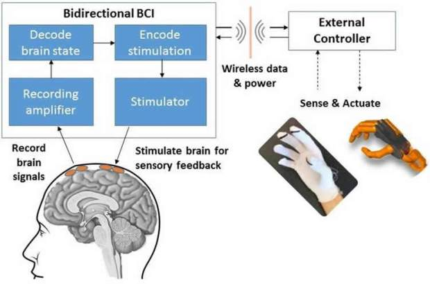 bci-arm-control-neurosciencenews.jpg
