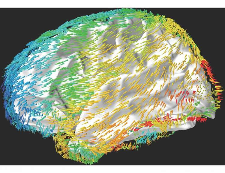 brain-waves-memory-neurosciencenews.jpg