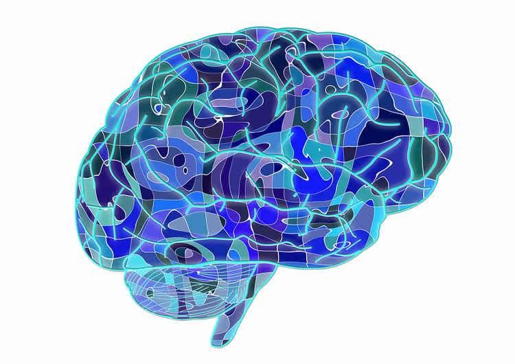 ignorance-knowledge-neurosciencnews-public.jpg