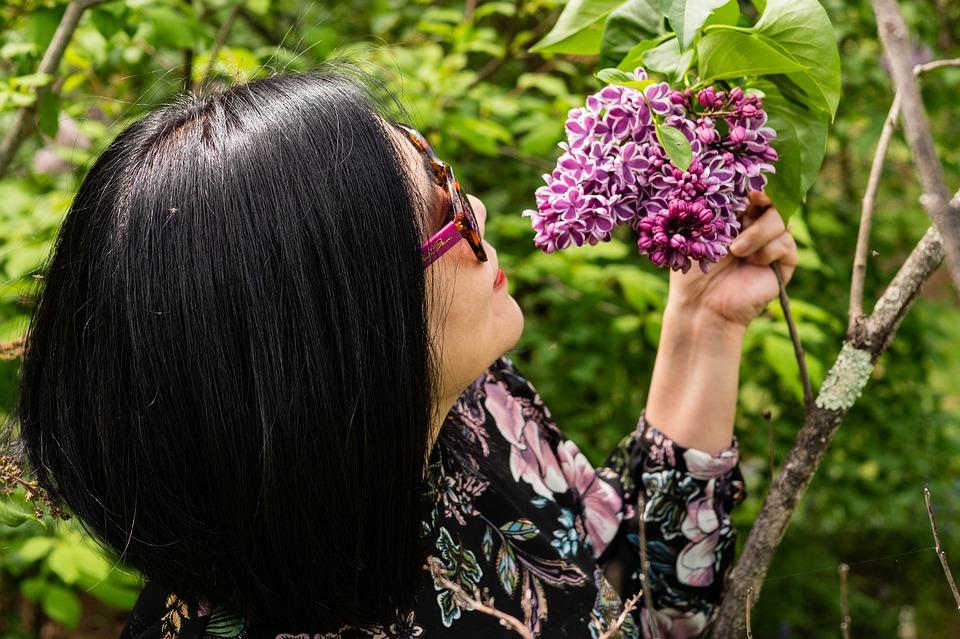 smelling-purple-lilac-3402287_960_720.jpg