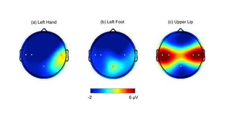 infant-brain-lips-neurosciencenews.jpg